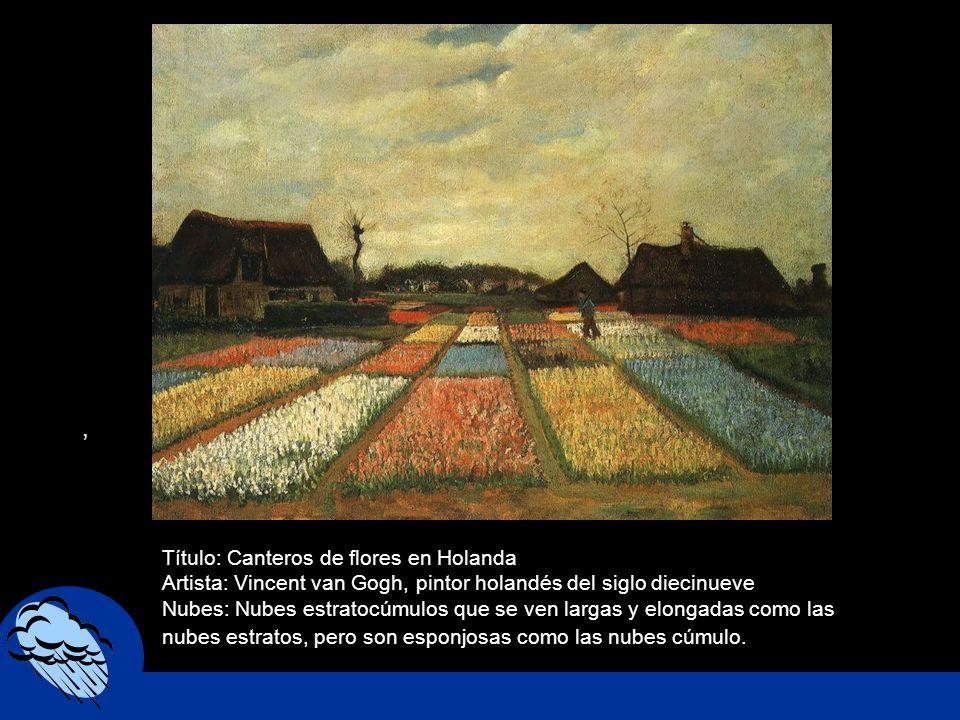 , Título: Canteros de flores en Holanda