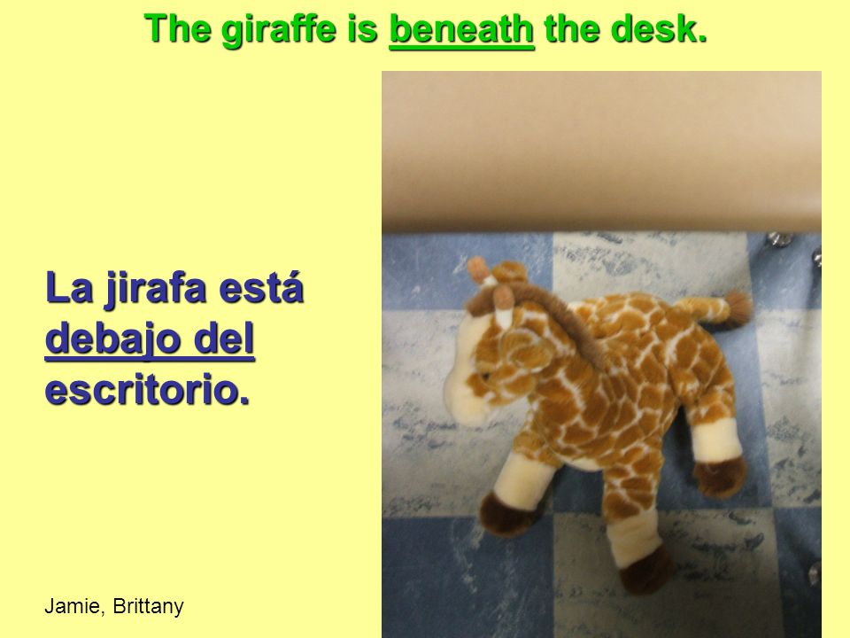 The giraffe is beneath the desk.