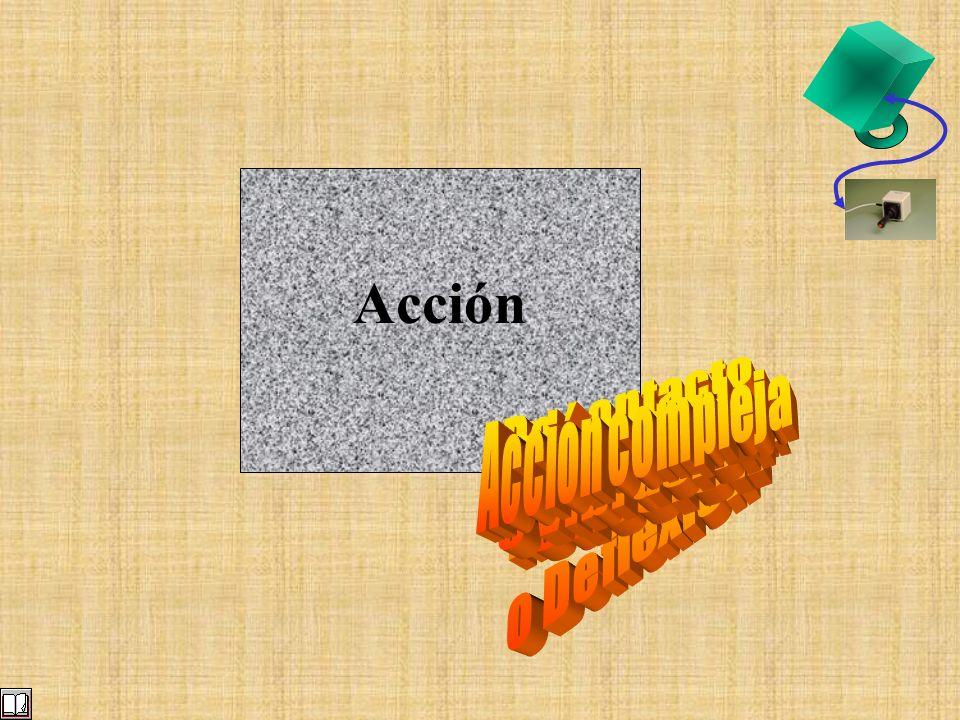 Acción De contacto, flexibilidad o Deflexión Acción compleja Posición