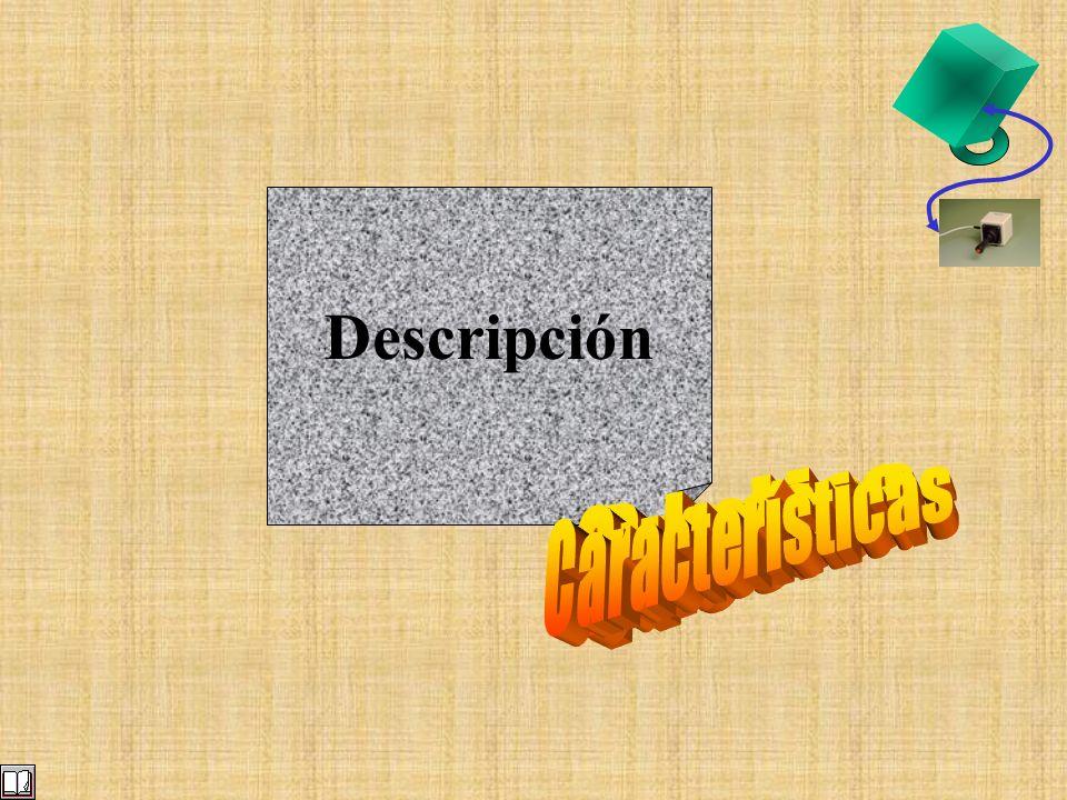 Descripción Subclase Precisa Características