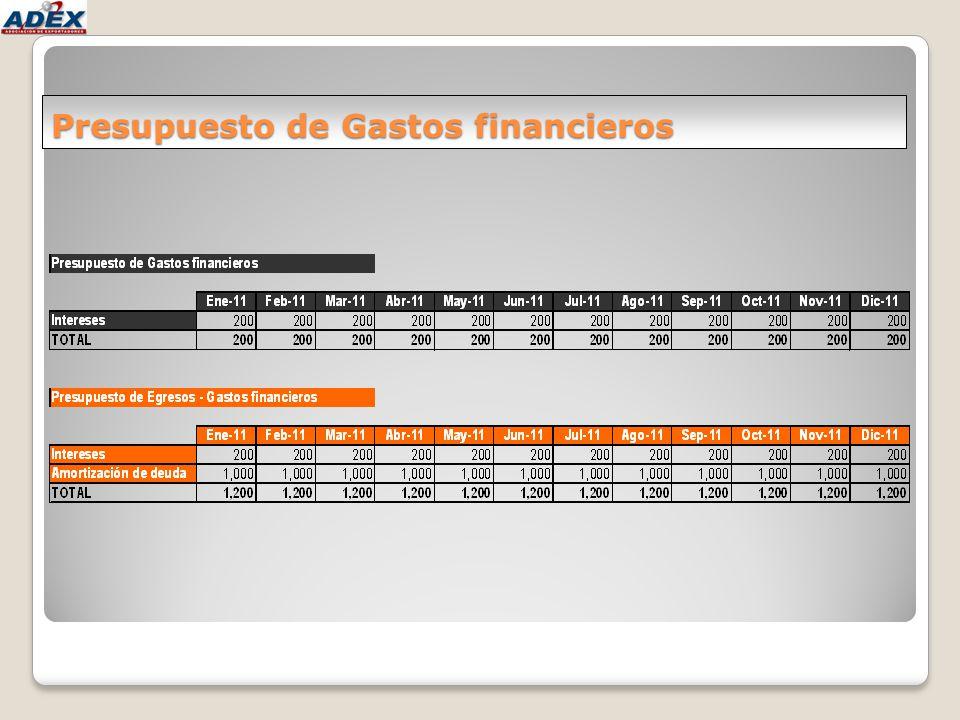 Presupuesto de Gastos financieros
