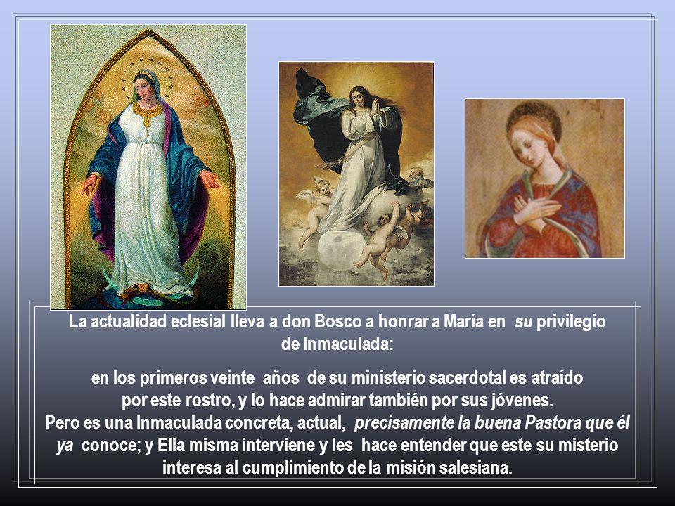 La actualidad eclesial lleva a don Bosco a honrar a María en su privilegio de Inmaculada: