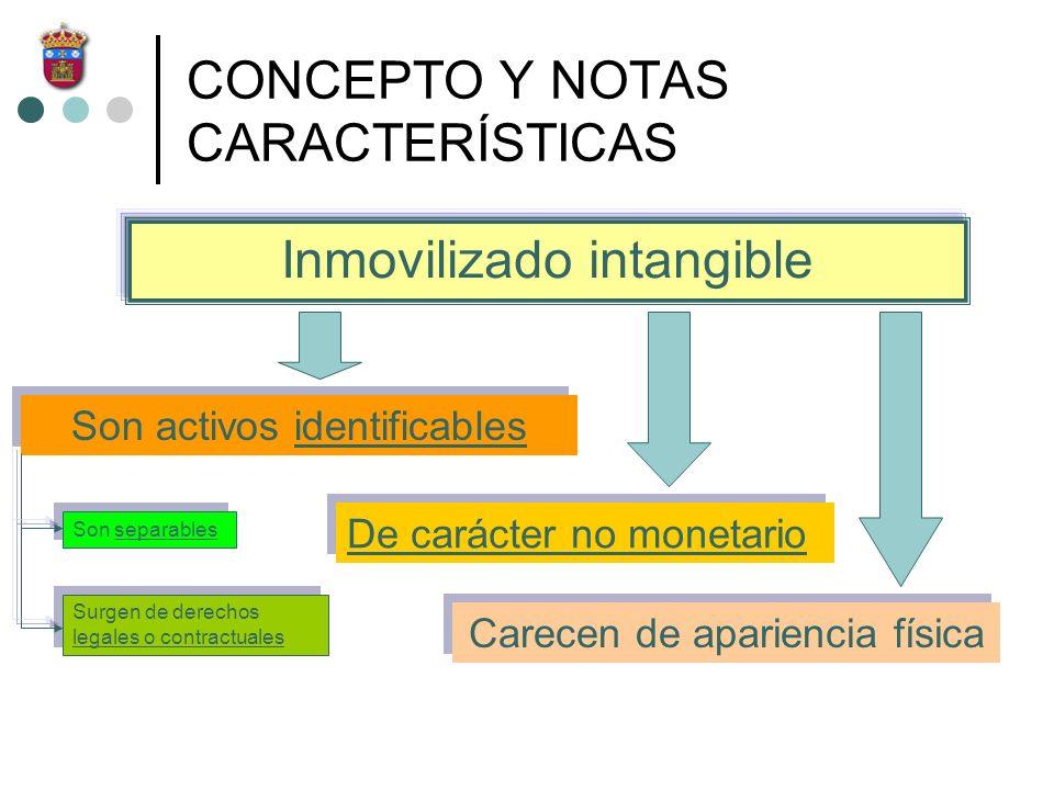 CONCEPTO Y NOTAS CARACTERÍSTICAS