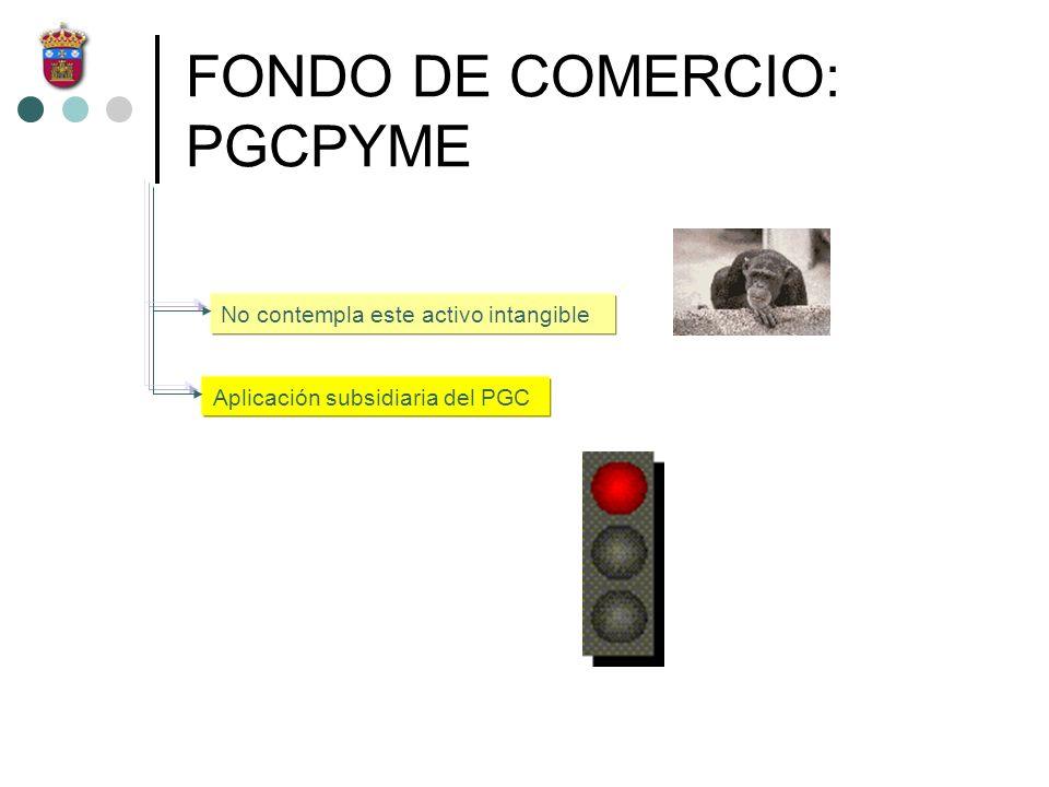 FONDO DE COMERCIO: PGCPYME