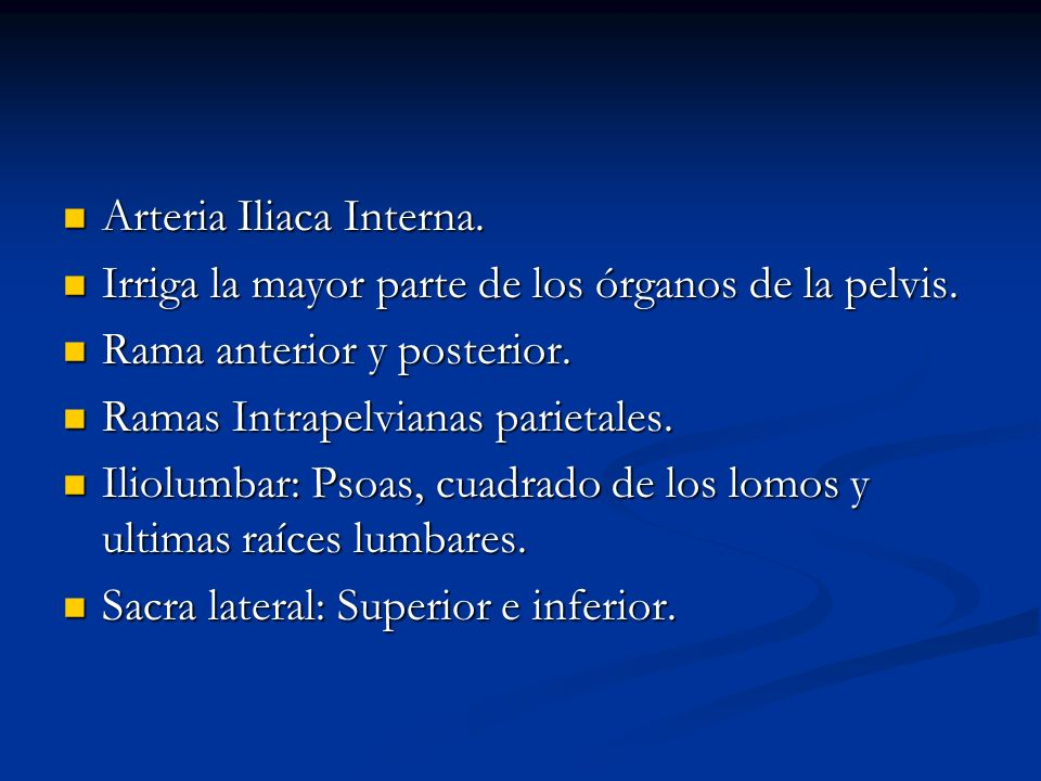 Arteria Iliaca Interna.