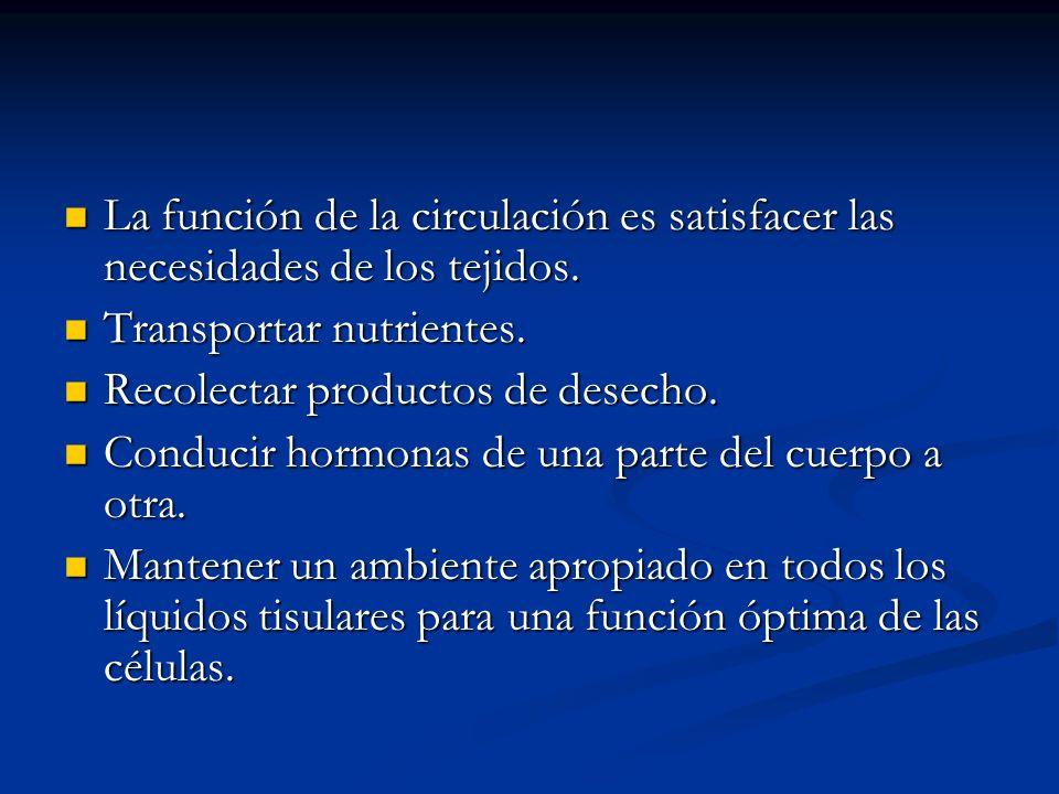 La función de la circulación es satisfacer las necesidades de los tejidos.