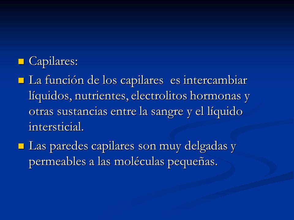 Capilares: