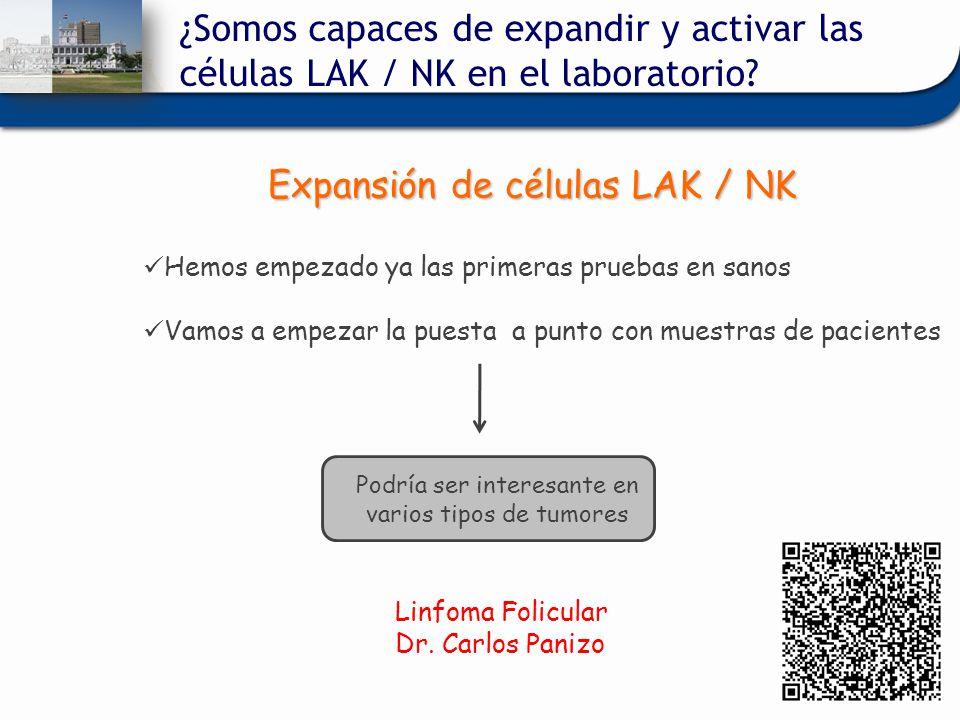 Expansión de células LAK / NK