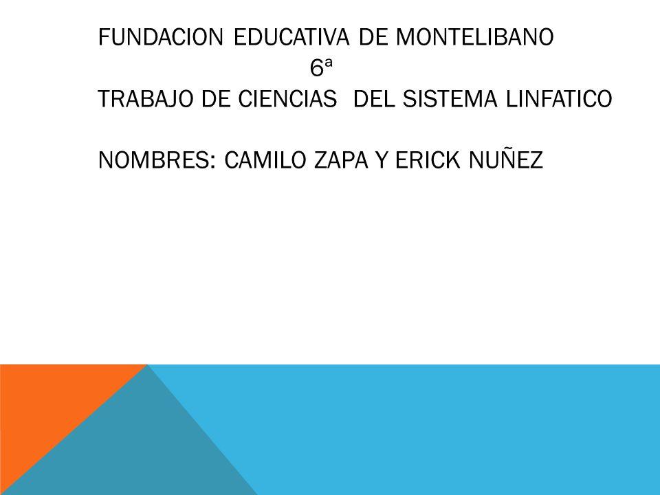 FUNDACION EDUCATIVA DE MONTELIBANO
