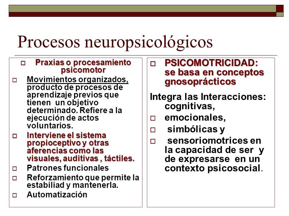 Procesos neuropsicológicos