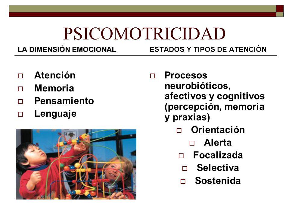 PSICOMOTRICIDAD Atención Memoria Pensamiento Lenguaje