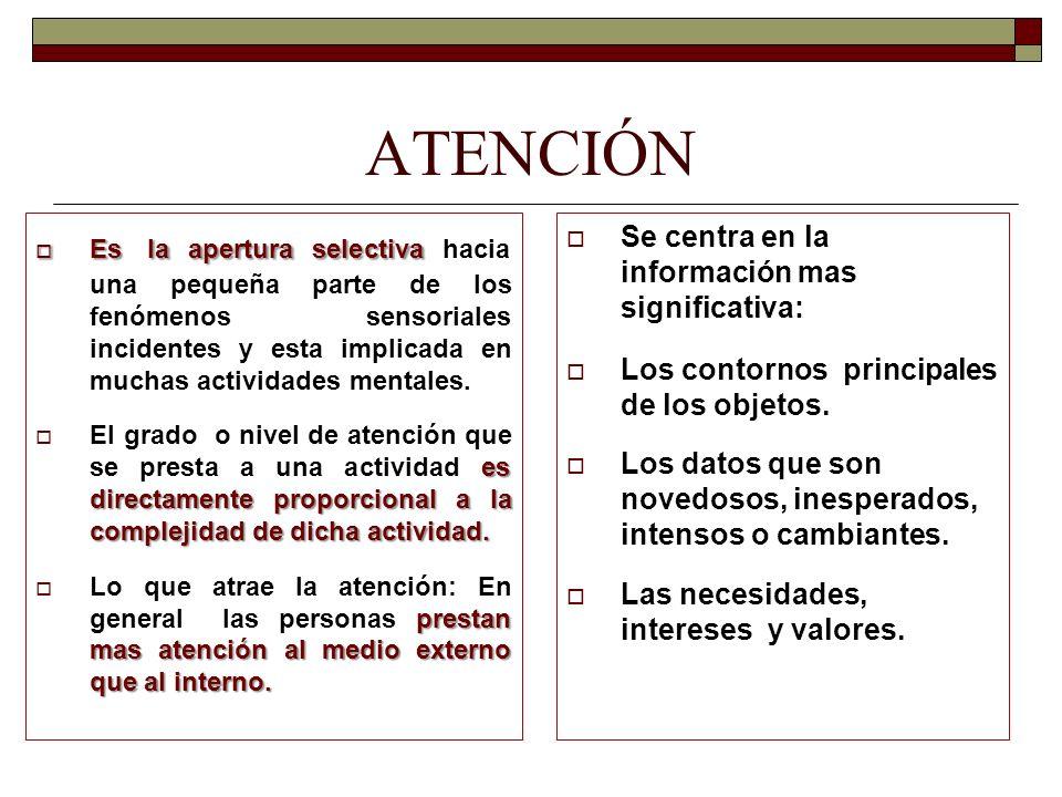 ATENCIÓN Se centra en la información mas significativa: