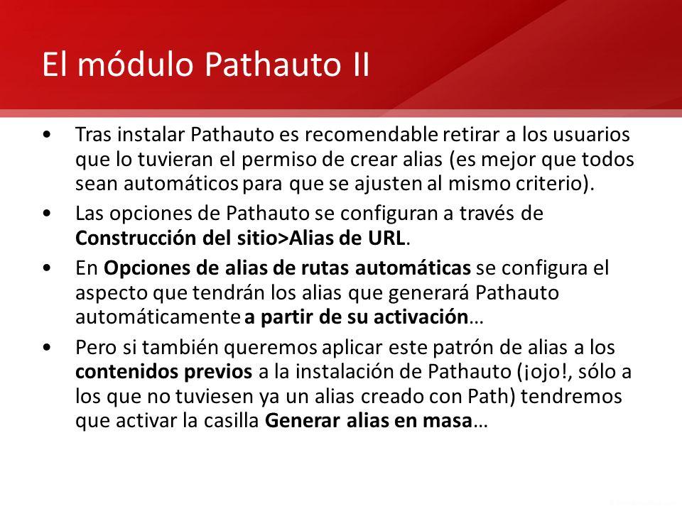 El módulo Pathauto II