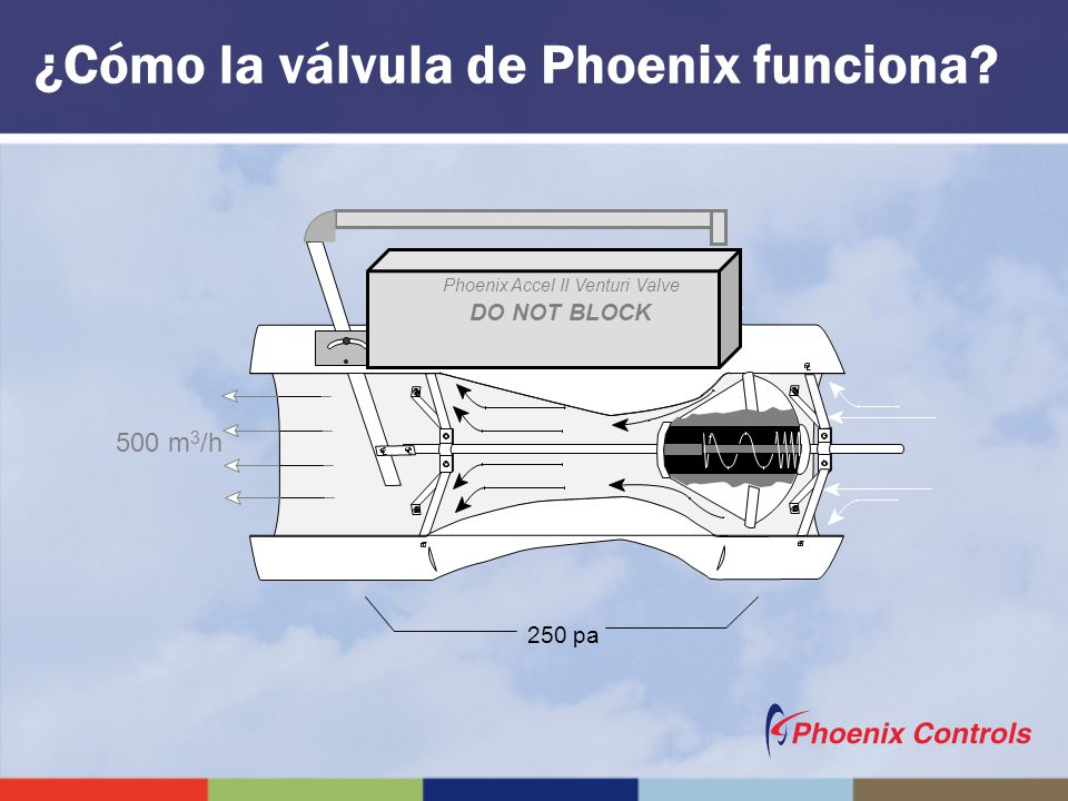 ¿Cómo la válvula de Phoenix funciona