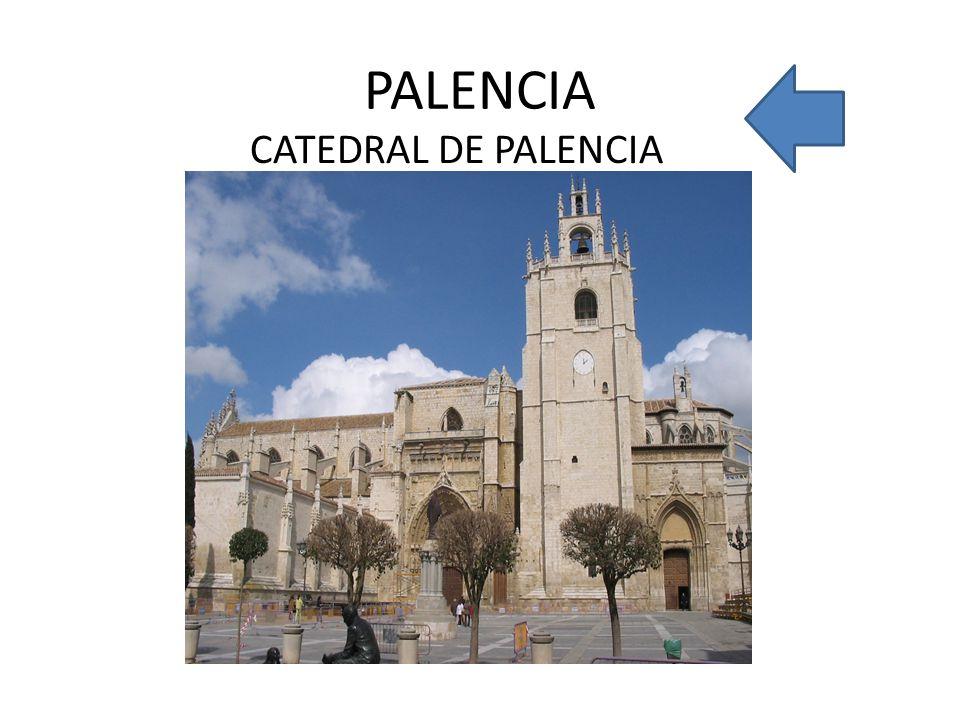 PALENCIA CATEDRAL DE PALENCIA