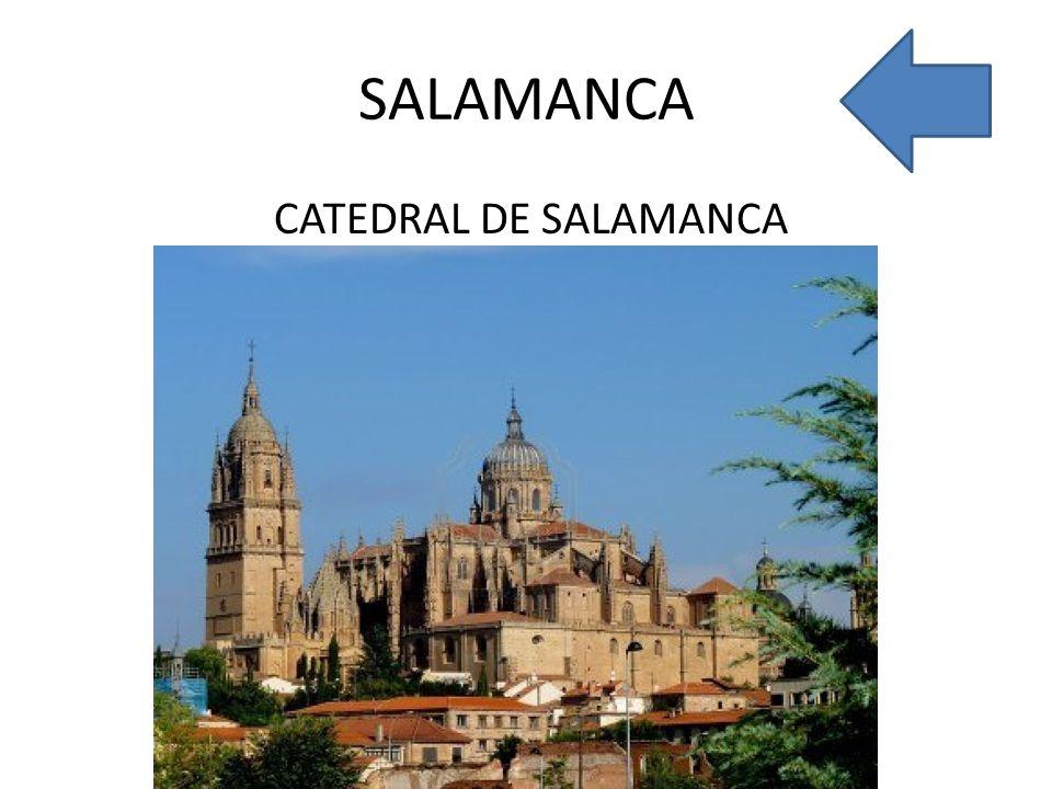 SALAMANCA CATEDRAL DE SALAMANCA
