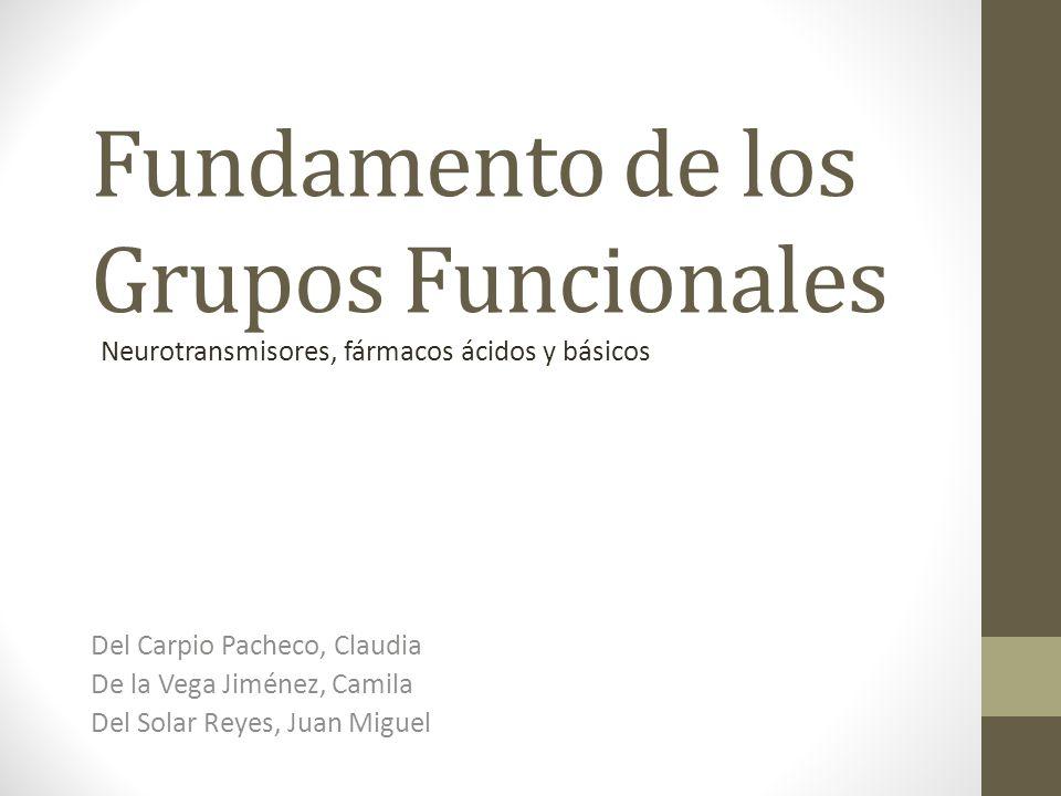 Fundamento de los Grupos Funcionales