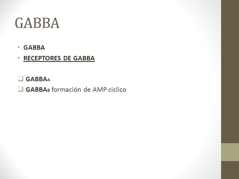 GABBA GABBA RECEPTORES DE GABBA GABBAA GABBAB formación de AMP ciclico