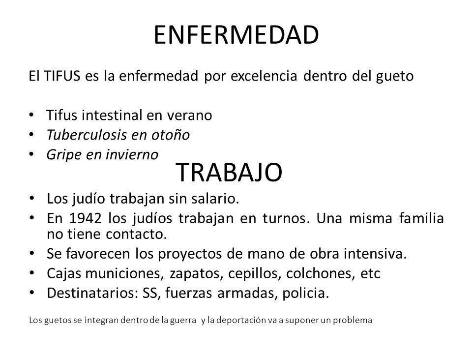 ENFERMEDAD El TIFUS es la enfermedad por excelencia dentro del gueto. Tifus intestinal en verano. Tuberculosis en otoño.