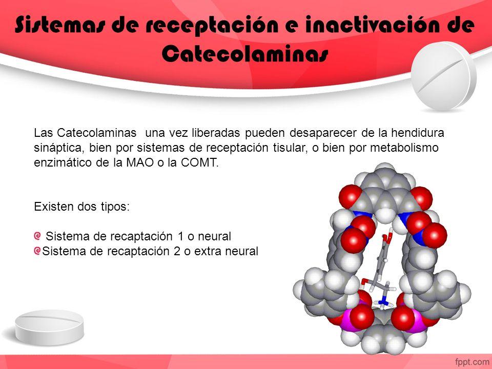 Sistemas de receptación e inactivación de Catecolaminas