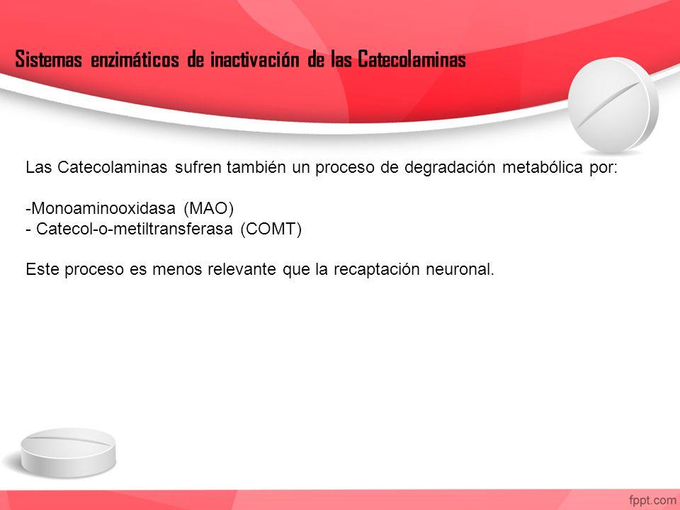 Sistemas enzimáticos de inactivación de las Catecolaminas