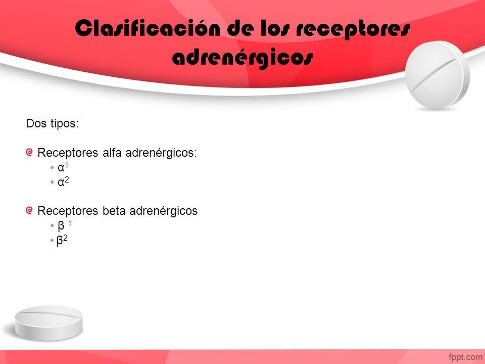 Clasificación de los receptores adrenérgicos