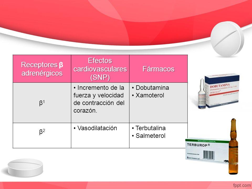 Receptores β adrenérgicos Efectos cardiovasculares (SNP) Fármacos
