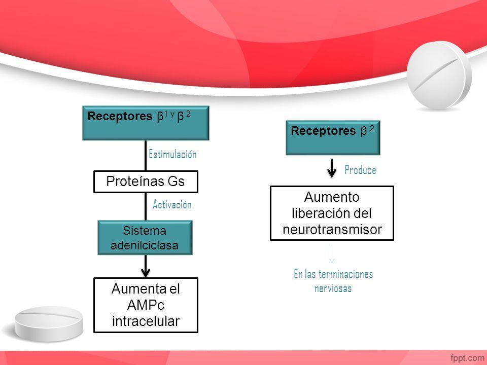 Aumento liberación del neurotransmisor