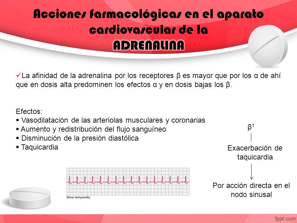 Acciones farmacológicas en el aparato cardiovascular de la ADRENALINA