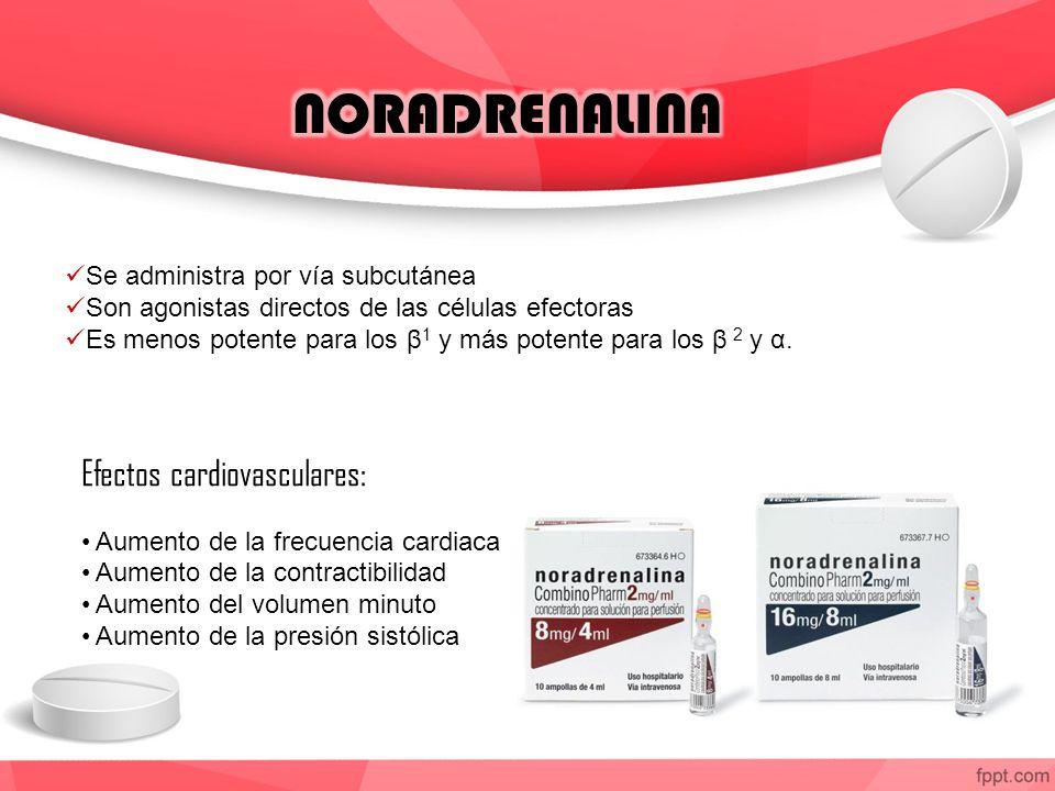 NORADRENALINA Efectos cardiovasculares: