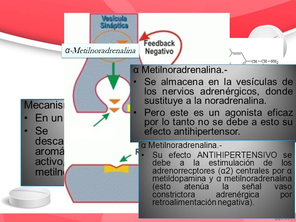 α-Metilnoradrenalina