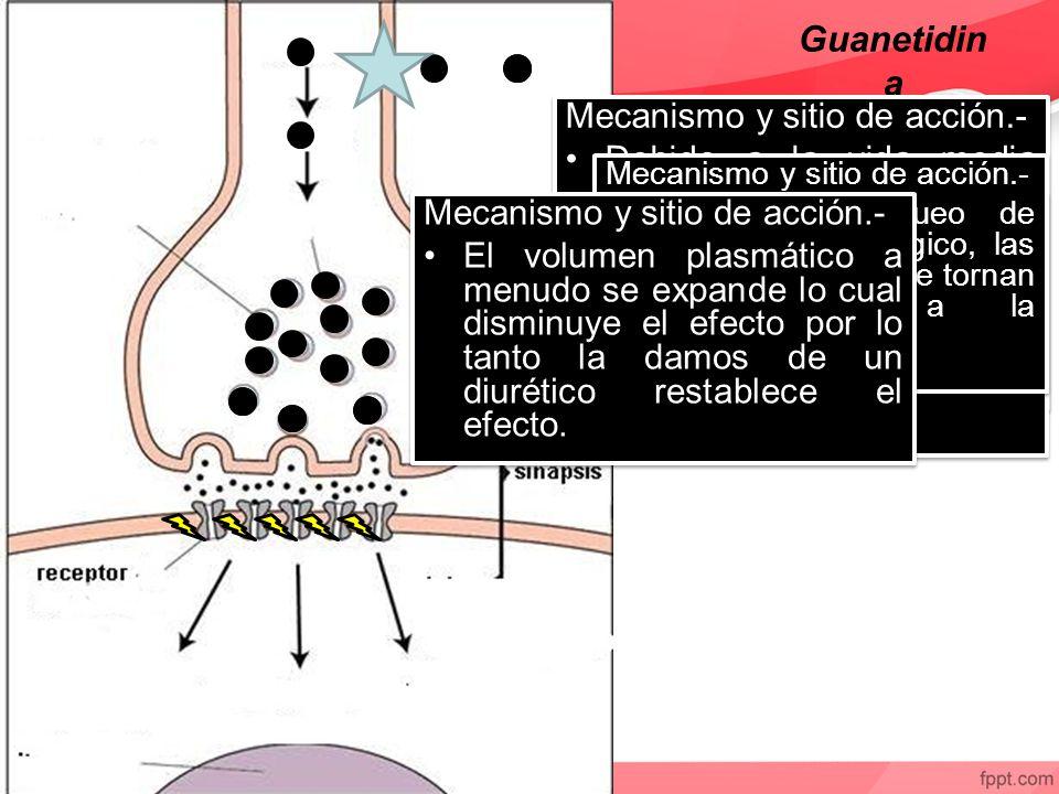 Guanetidina Mecanismo y sitio de acción.-