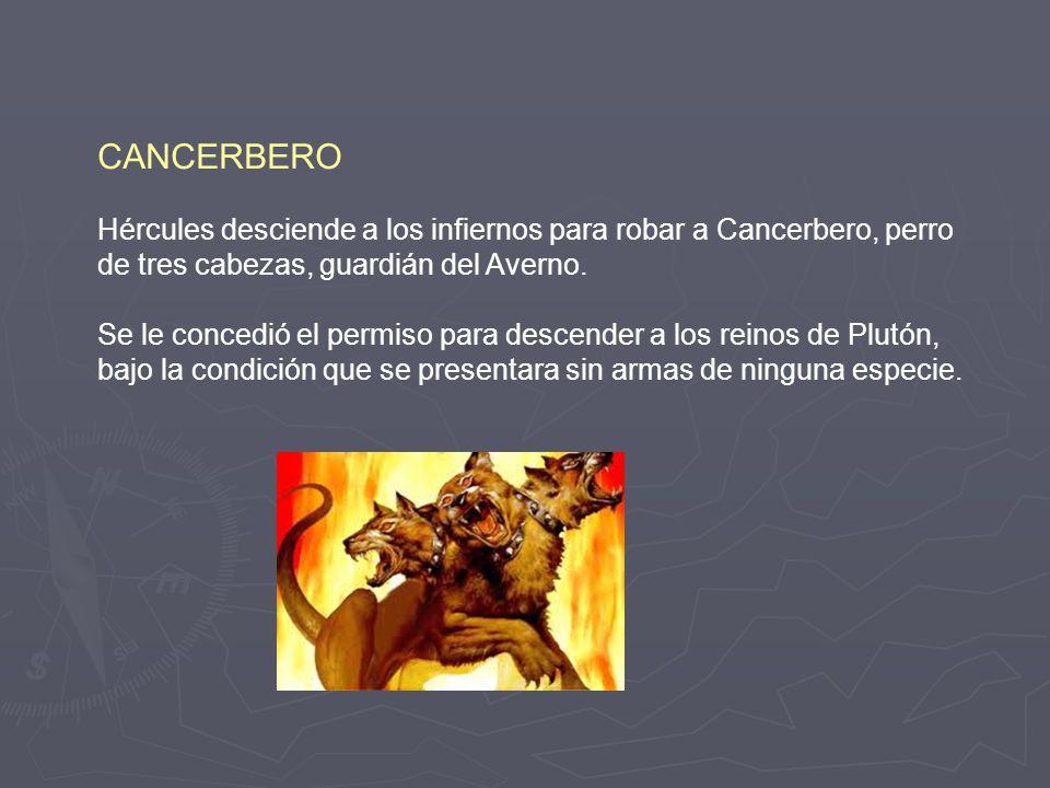 CANCERBERO Hércules desciende a los infiernos para robar a Cancerbero, perro de tres cabezas, guardián del Averno.
