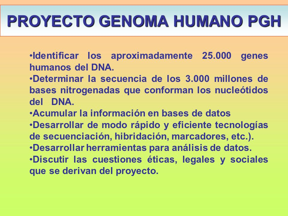 Ingenier a gen tica manipulaci n gen tica clonaci n g nica for En 2003 se completo la secuenciacion del humano