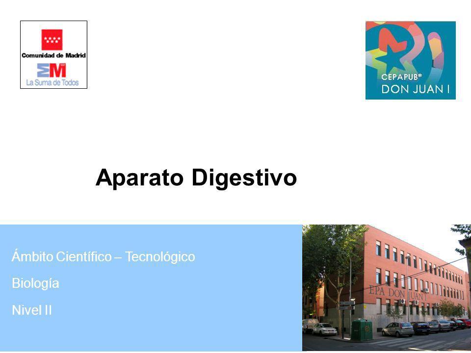 Aparato Digestivo Ámbito Científico – Tecnológico Biología Nivel II