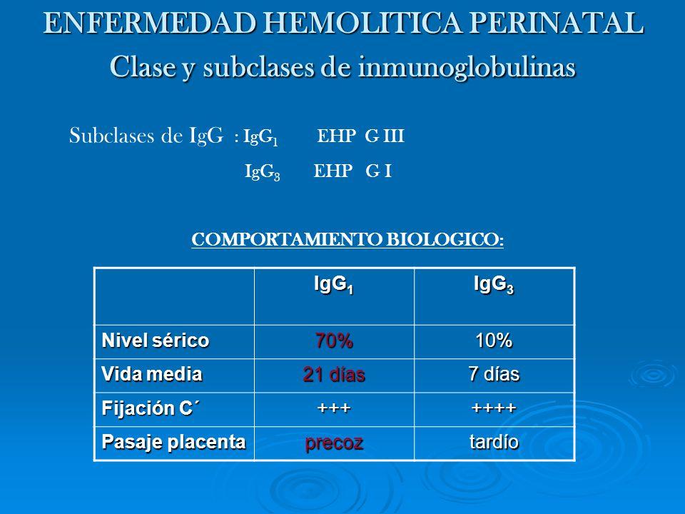 ENFERMEDAD HEMOLITICA PERINATAL Clase y subclases de inmunoglobulinas