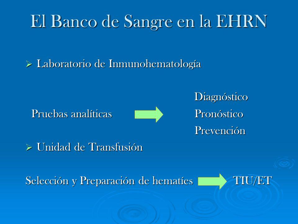 El Banco de Sangre en la EHRN