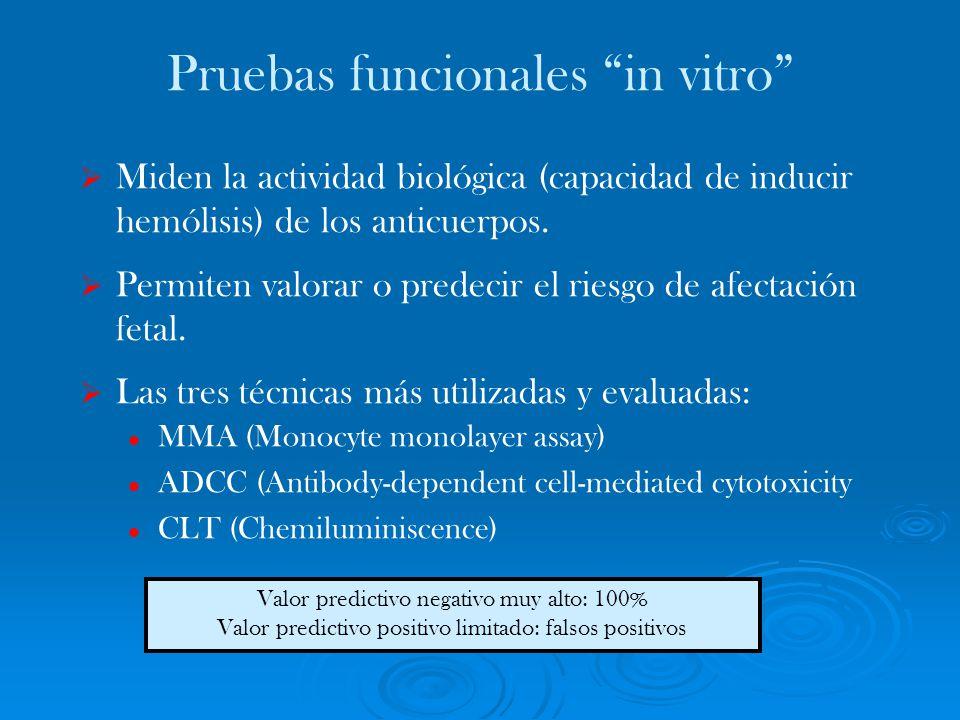 Pruebas funcionales in vitro