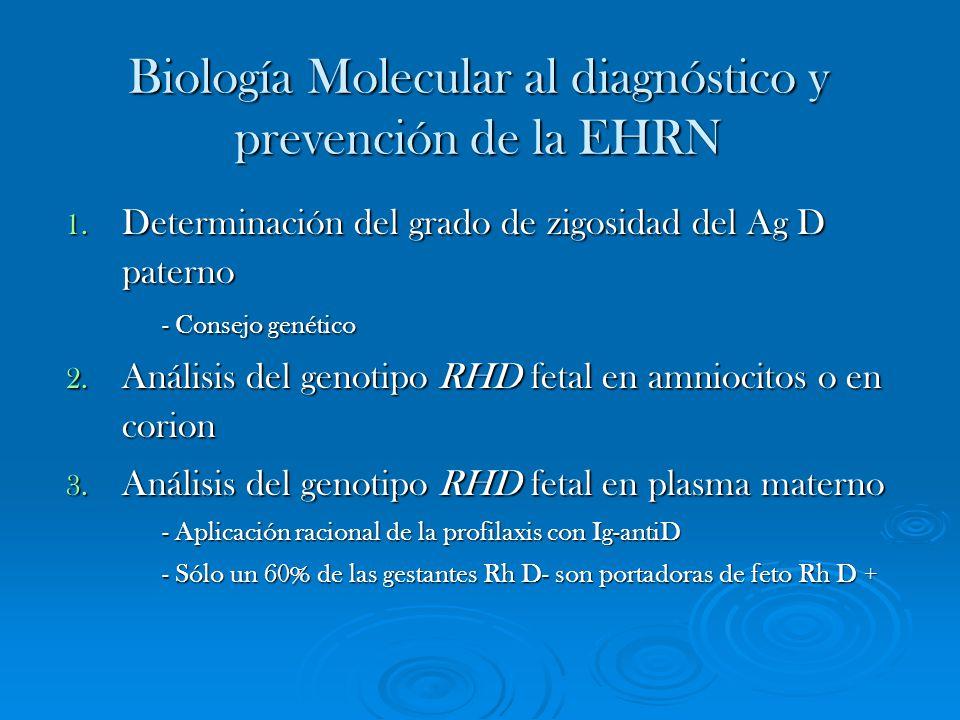 Biología Molecular al diagnóstico y prevención de la EHRN
