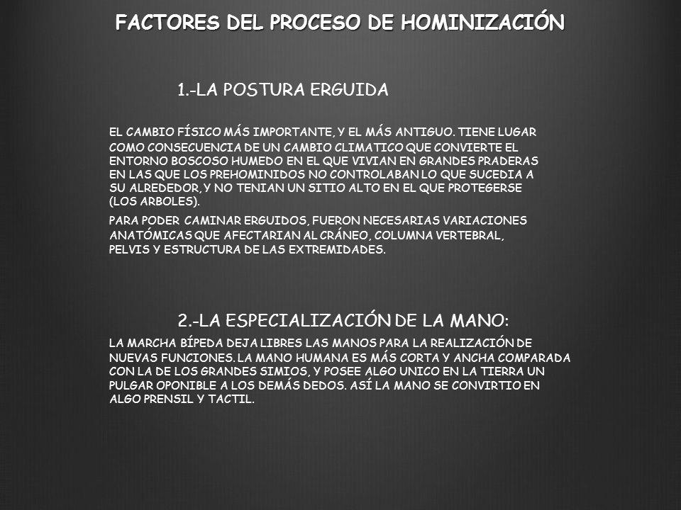 FACTORES DEL PROCESO DE HOMINIZACIÓN