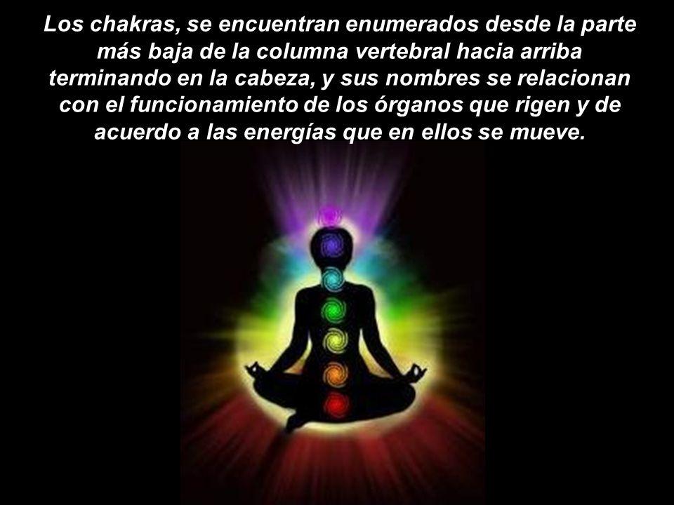 Los chakras, se encuentran enumerados desde la parte más baja de la columna vertebral hacia arriba terminando en la cabeza, y sus nombres se relacionan con el funcionamiento de los órganos que rigen y de acuerdo a las energías que en ellos se mueve.