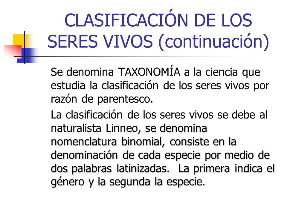 CLASIFICACIÓN DE LOS SERES VIVOS (continuación)