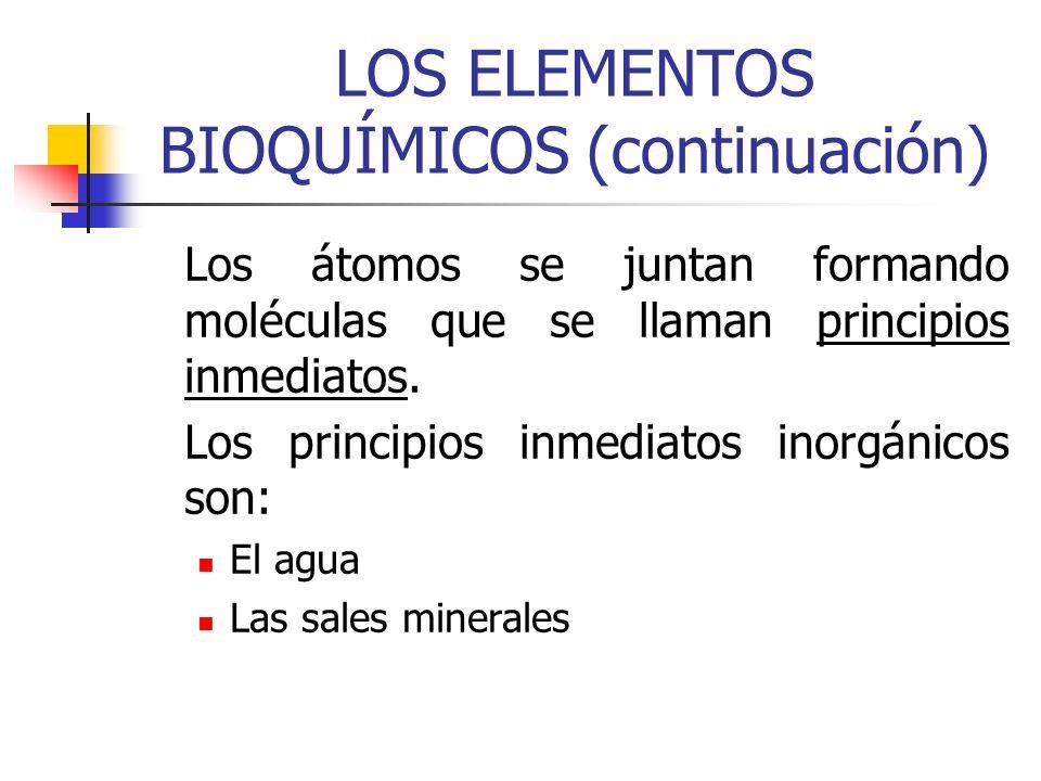 LOS ELEMENTOS BIOQUÍMICOS (continuación)