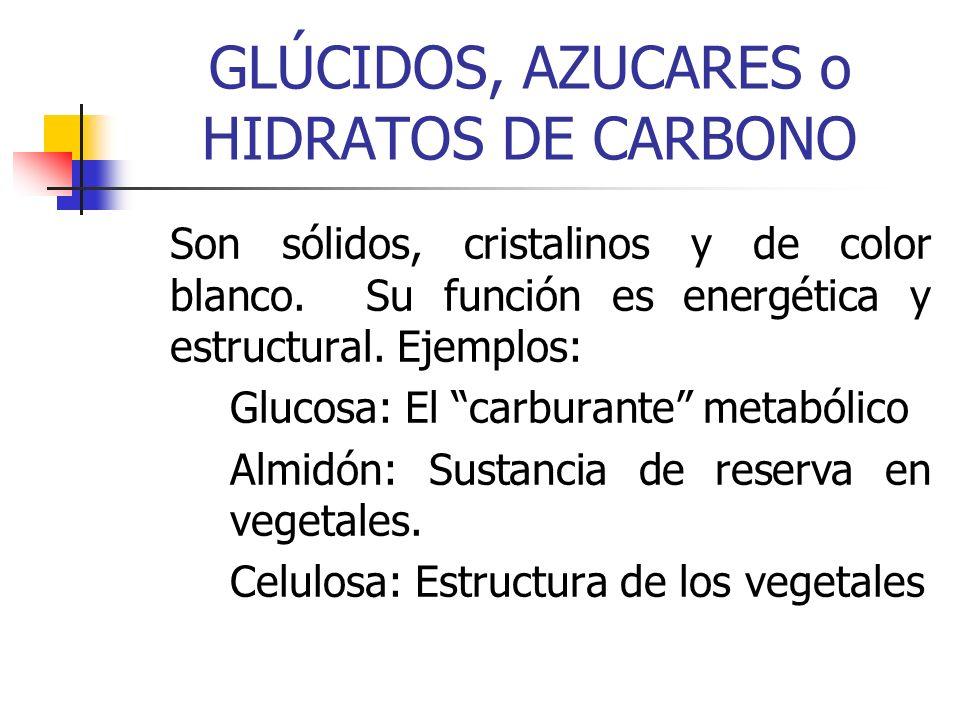 GLÚCIDOS, AZUCARES o HIDRATOS DE CARBONO