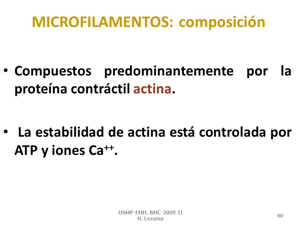 MICROFILAMENTOS: composición