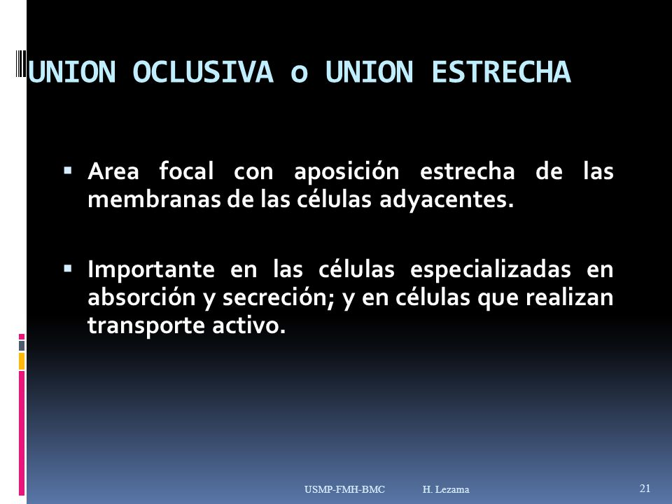 UNION OCLUSIVA o UNION ESTRECHA