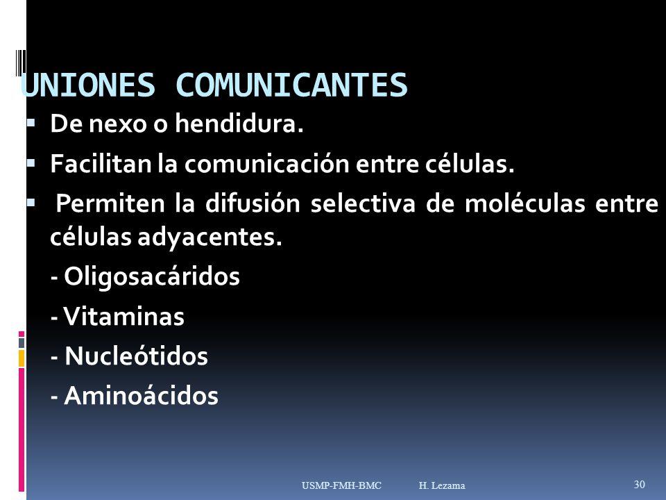 UNIONES COMUNICANTES De nexo o hendidura.