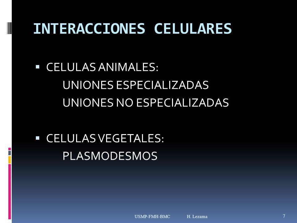 INTERACCIONES CELULARES