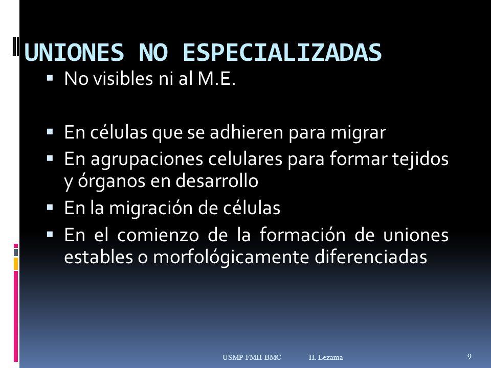 UNIONES NO ESPECIALIZADAS