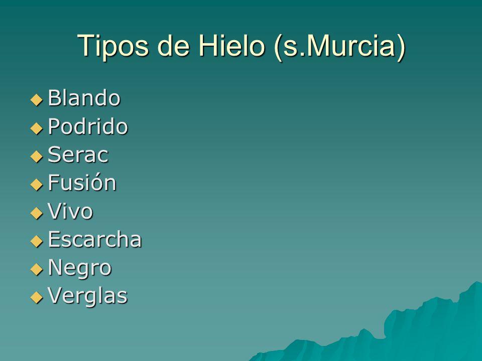 Tipos de Hielo (s.Murcia)